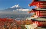 日本人の特徴について。